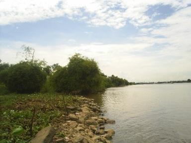 ประกาศ : ขายที่ติดแม่น้ำ