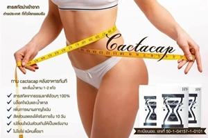 Cactacap ช่วยเผาผลาญไขมัน บล็อคไขมันและน้ำตาลเปลี่ยนไขมันส่วนเกินให้เป็นพลังงาน ไม่โยโย่แม้คนดื้อยา